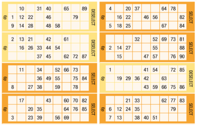 Bingo Ticket Selection