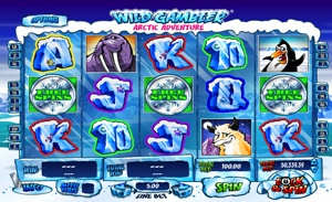 Coin Free Spins in Arctic Adventure Slot