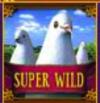 The Glass Slipper Dove Super Wild