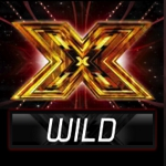 X Factor Judges' Jackpot Wilds