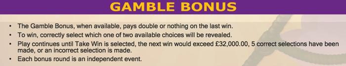 Twinkle Slot Gamble Bonus