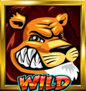 Wild Gambler Slot Wilds